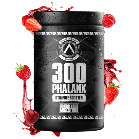 300 Phalanx Edition Spartan Rage - Gods Rage